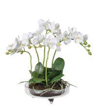 weißes Orchideengesteck in zarter Glasschale