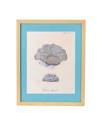 großes gerahmtes Bild mit Korallen-Print und türkisem Passepartout, Rahmen aus Holz