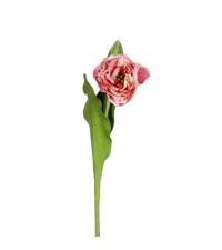 zarte rosa-rote Tulpe, prächtige Kunstblume