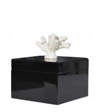 edle Aufbewahrungsbox glänzend schwarz mit weißem Korallengriff