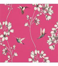 Tapete mit Kolibris und Ästen, Hintergrund pink mit silberfarbenen Äste