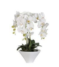 künstliches Orchideengesteck, Orchidee mit weißen Blüten in glänzendem, weißen Keramiktopf