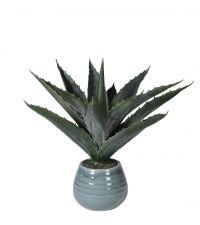 künstliche Aloe Vera Pflanze ist blauem, glasierten Keramiktopf