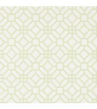 elegante Papiertapete mit Wabenmuster, Trellis-Tapete weiß & grün