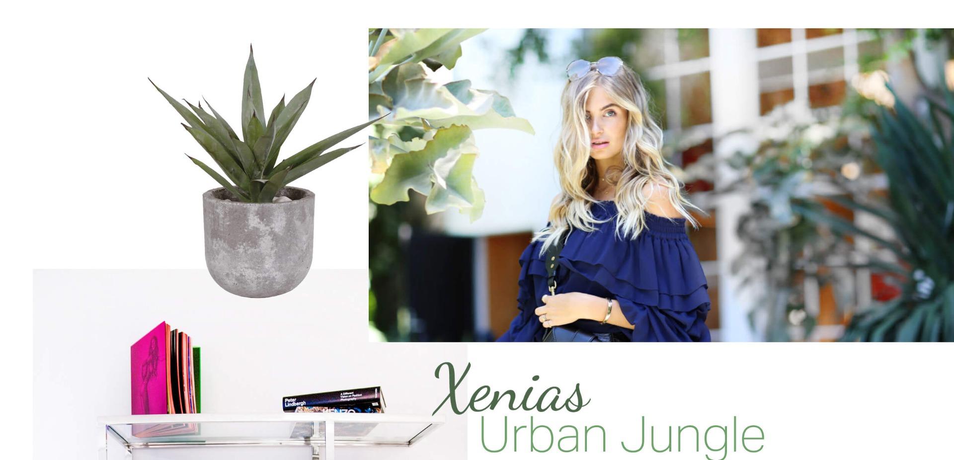 Xenias Urban Jungle - Looks